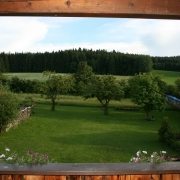 Bayerischer Wald Natur-Pur