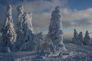 Winter – Schneemandl im Bayerischen Wald